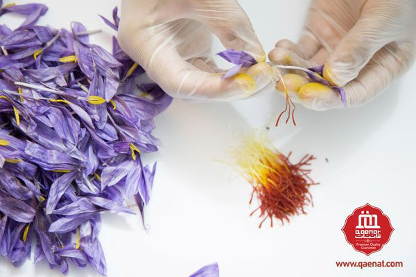 Qaenat Saffron Extract By Hand